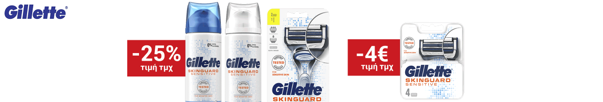 Gillette skinguard sm19 beauty