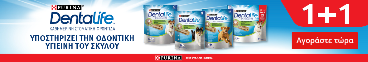 Dentalife sm24 pet