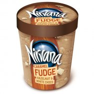 Nestle Nirvana Caramel Fudge 353gr (470ml)